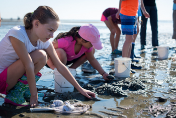 A group of students collecting samples from water during a science class