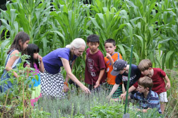 A teacher and group of students in a field of crops